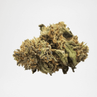 Fleurs CBD Chocolope | The Hemp Corner