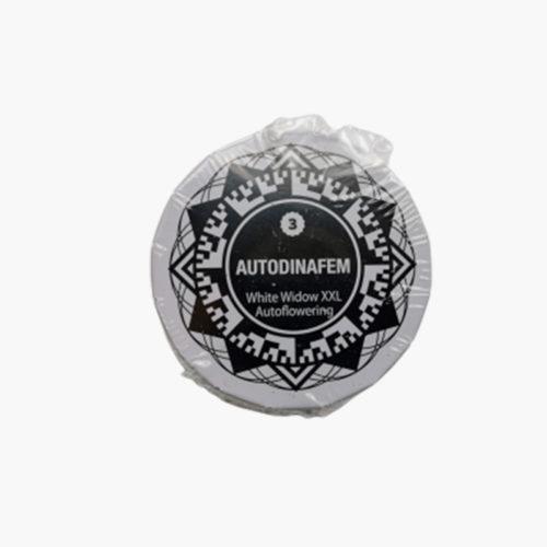 White Widow XXL Auto-fleurissante | Dinafem Seeds