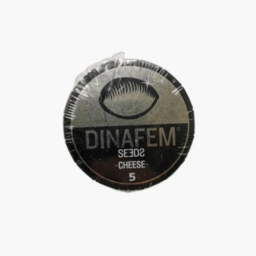 Cheese Féminisée | Dinafem Seeds