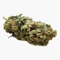 Fleurs CBD Super Silver Haze | The Hemp Corner