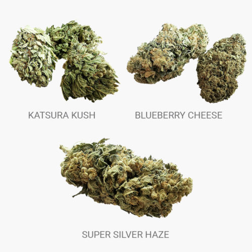 Starter Pack Gold Fleurs CBD | The Hemp Corner